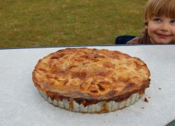 festival pie